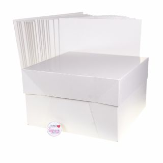 Cake Box With Lid WHITE 10 Inch Pack of 10