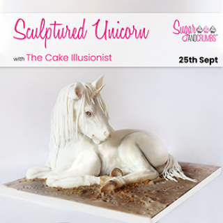 The Cake Illusionist Sculptured Unicorn at our warehouse on 25th September 2021