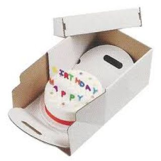 Cake Transport Box HEAVY DUTY 14 Inch