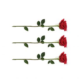 PhotoCake Strips STEMMED ROSE